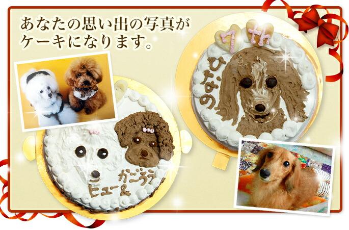 ワンちゃんの思い出の写真がケーキになります。