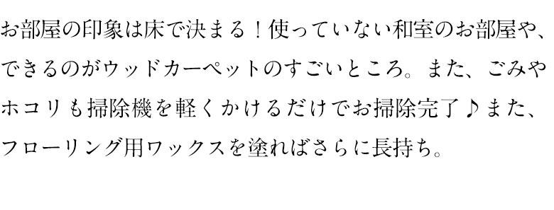 cs-00_19.jpg