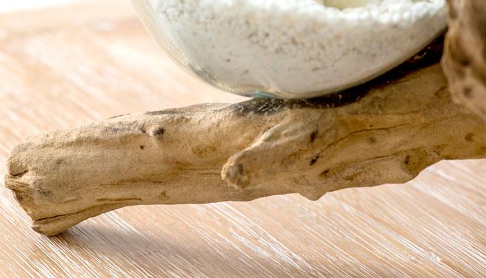 玉ねぎガラス ガラスのオブジェ メルトガラス 流木 ウッド 花器 花瓶 テラリウム 水槽 アクアリウム