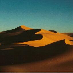 この砂丘の頂上まで登りました。