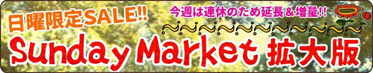�掩�����祉����sunday market