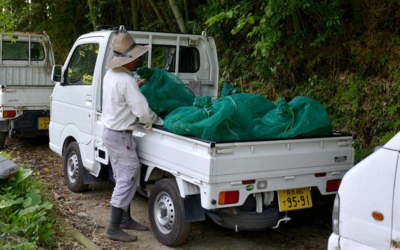茶葉は袋に入れて送風機つきトラックに乗せる