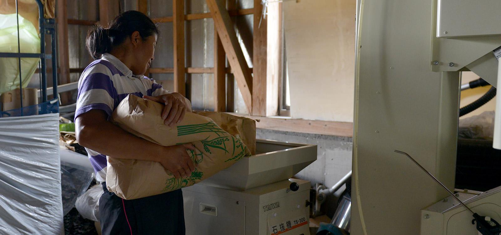 石抜き機に玄米を投入する後藤さん