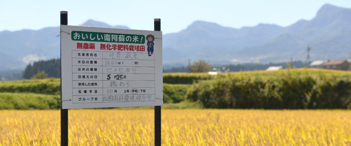 無農薬・無施肥栽培であることを示す立て看板