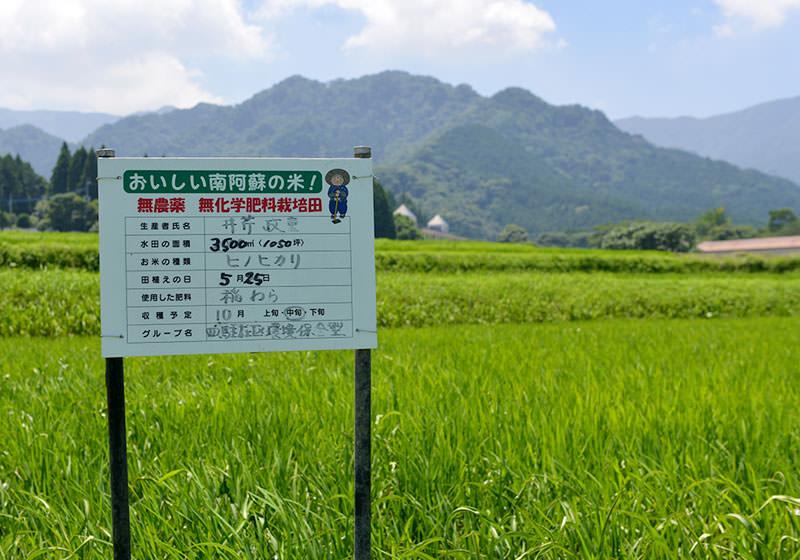 無農薬栽培であることを示す立て看板。