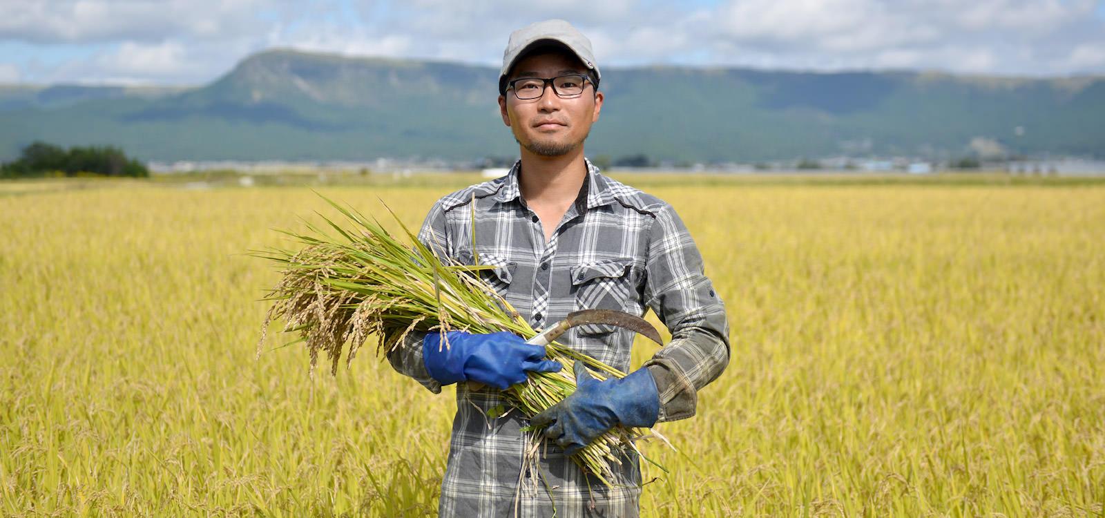 28年度産 下村農園のお米