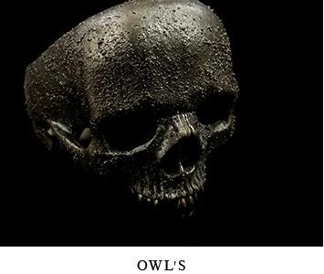 OWL'S/アウルズ