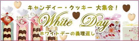 ホワイトデークッキー