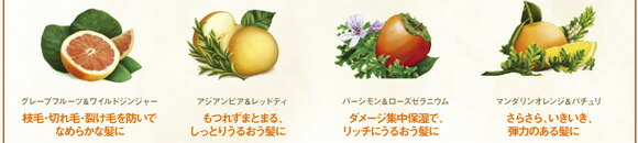 グレープフルーツ&ワイルドジンジャー。アジアンピア&レッドティ。パーシモン&ローズゼラニウム。マンダリンオレンジ&パチュリ