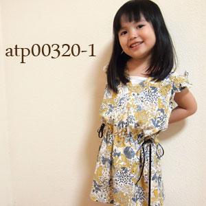 atp00320-1