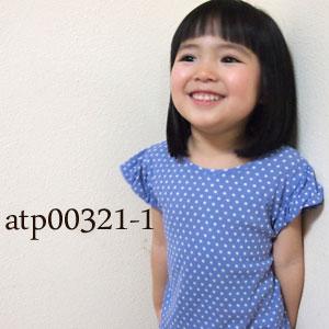 atp00321-1