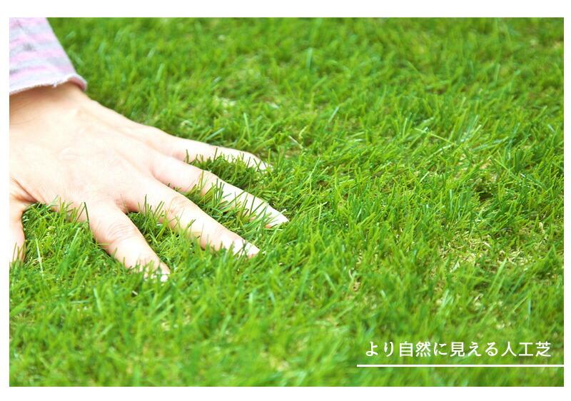 fme_04.jpg