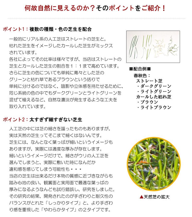 fme_05.jpg