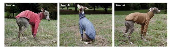 犬服 イタリアングレイハウンド服 Tシャツ
