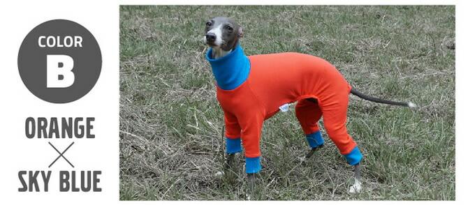 名前入れ 犬服 イタリアングレイハウンド洋服