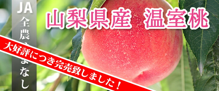 JA全農やまなし 温室桃