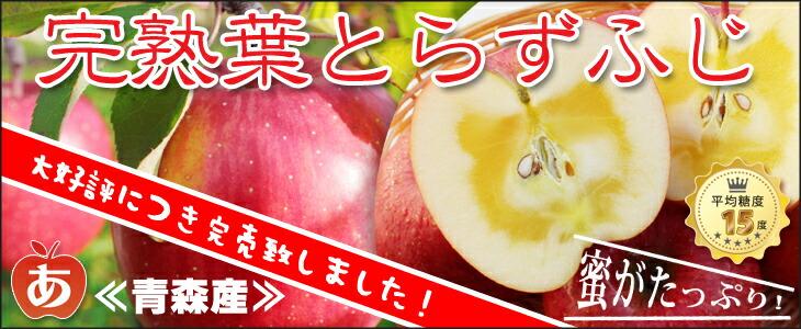 青森県弘前市産りんご ギフト 葉とらずふじ サンふじ