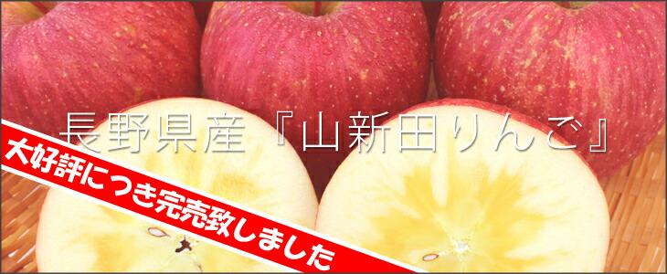 長野県産「山新田りんご」 サンふじ シナノスイート
