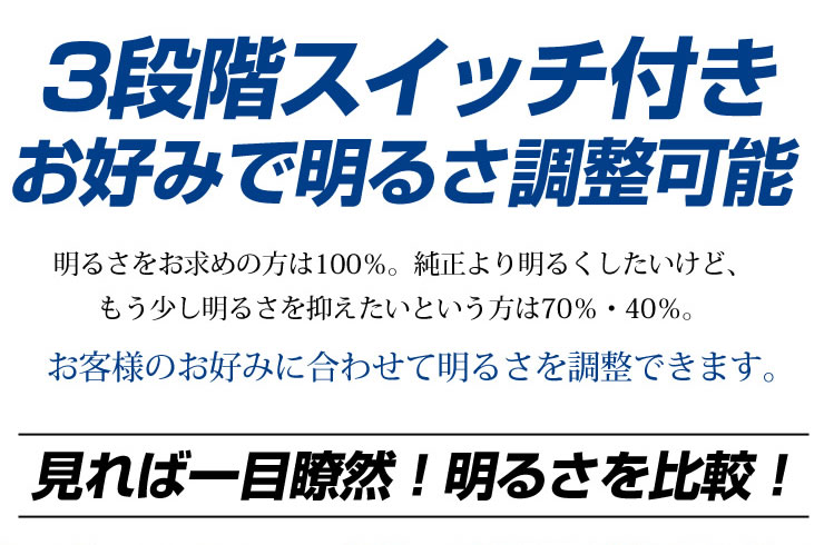 gengo_5.jpg
