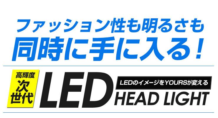 led_h4_05.jpg