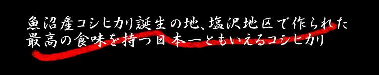 最高の食味を持つ日本一ともいえるコシヒカリ