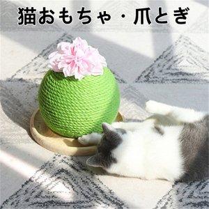 ラモダ 猫爪とぎ サボテン