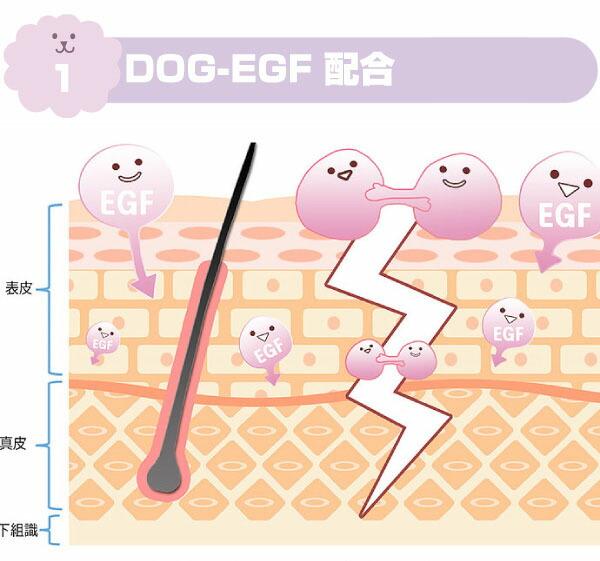 DOG-EGF配合
