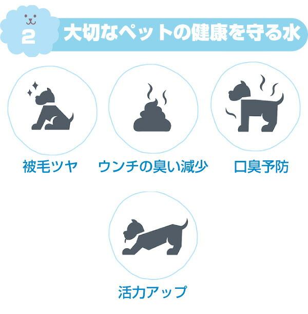 大切なペットの健康を守る水