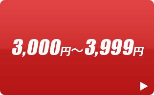 3000-3999