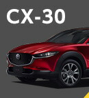 CX-30