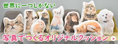 お名前刺繍 写真でつくる オーダーメイド クッション オリジナル メモリアル ペット 犬 猫 動物 プレゼント オーガニック 綿 プリント 印刷