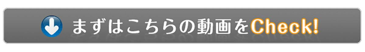 キャリーラクダ紹介映像