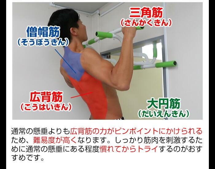 ワイドグリッププルアップで鍛えられる筋肉
