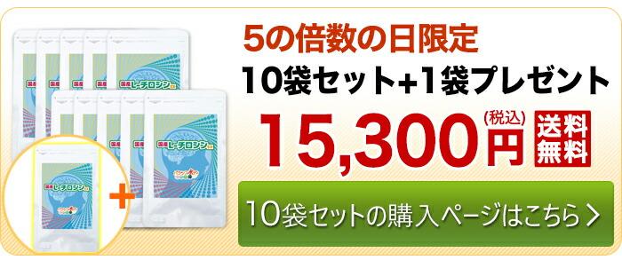 10袋セット+1袋プレゼント