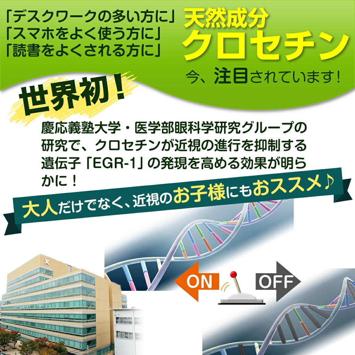 慶應義塾大学・医学部眼科学研究グループの研究