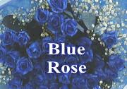 ブルーローズ 青いバラの花束 ブーケ