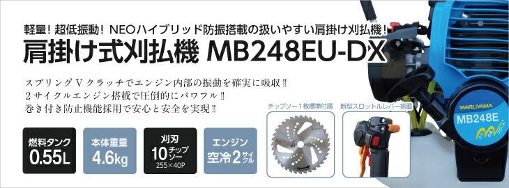 MB248EU-DX
