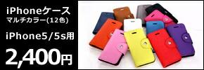 iPhone5/5s専用マルチカラーケース