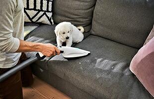 ソファーやお布団のハウスダストもしっかり吸引します。布についたペットの毛をお掃除するのにも最適です。