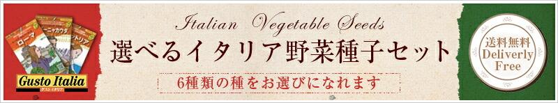 選べるイタリア野菜種子セット
