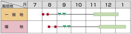 greenkanon_02.jpg