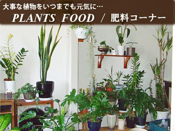 大事な植物をいつまでもお元気に…