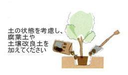 植栽の手引き 植木4