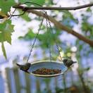 バードハウス・鳥のえさ台