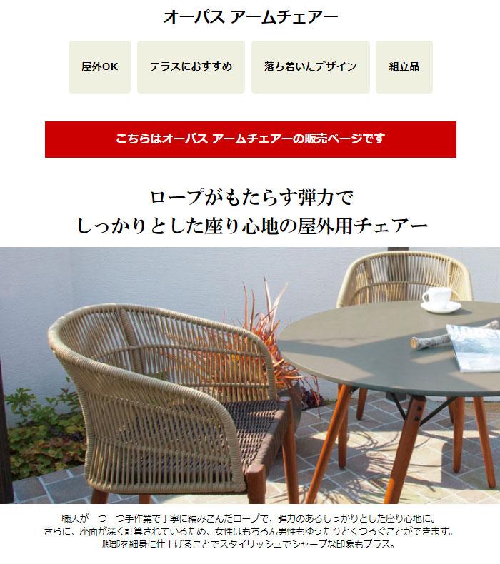 ガーデンチェアー  オーパス アームチェアー  TRD-06AC 組立式 屋外用家具 ガーデン家具 チェアー 椅子 庭 テラス ファニチャー  インテリア