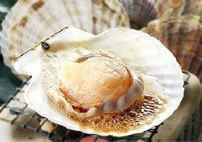 ホタテ ほたて 帆立 焼肉 焼き肉 バーベキュー BBQ