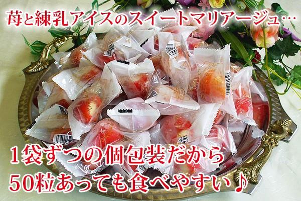 アイスクリーム 業務用 イチゴアイスクリーム 春摘み苺アイス いちごアイス