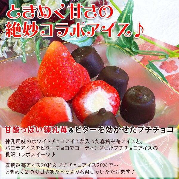 アイスクリーム 業務用 春摘み苺アイス 送料無料