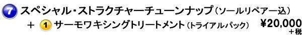 スペシャルストラクチャー+トライアル