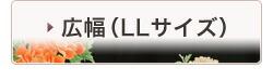 幅広(LL)